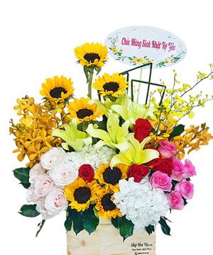 hoa sinh nhat k374
