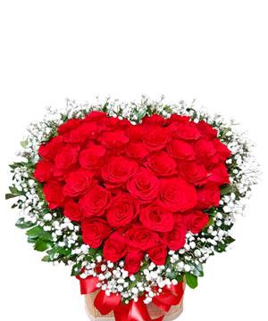hoa sinh nhat k379
