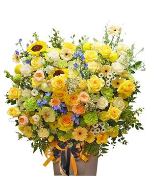 hoa sinh nhat k383