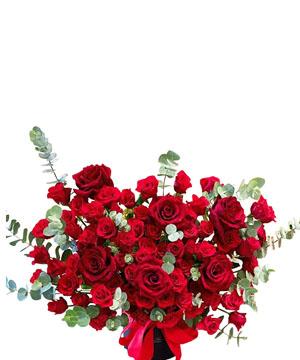 hoa sinh nhat k391