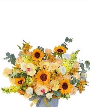 hoa sinh nhat k393