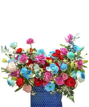 hoa sinh nhat k396