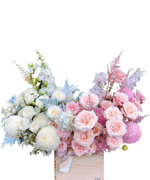 hoa sinh nhat k398