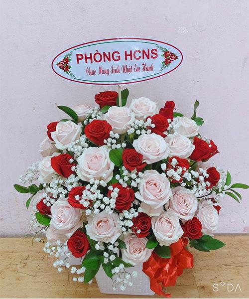 lang hoa dep 213