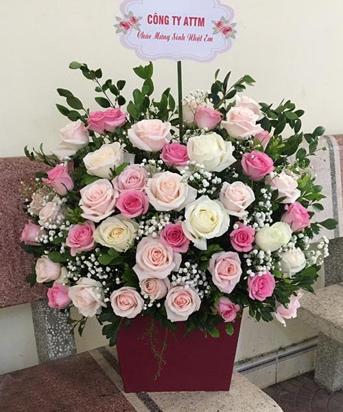 lang hoa dep 231