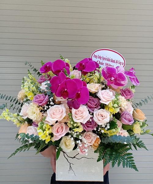 lang hoa dep 233